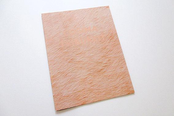 Tribukeit – Katalog Cosima Tribukeit